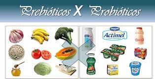 Pro e Prebióticos